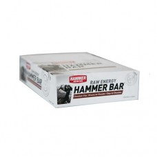 Hammer Nutrition Raw Energy Cranberry 50g Bars 12 serving boxed