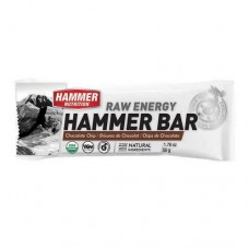 Hammer Nutrition Raw Energy Chocolate Chip Hammer Bar 50g - Single Serving