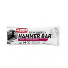Hammer Nutrition Raw Energy Cranberry Hammer Bar 50g - Single Serving